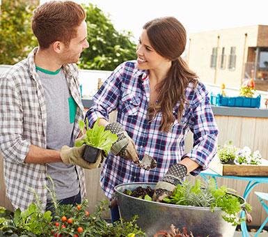 Найкращі садові інструменти
